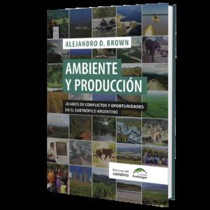 Ambiente y Produccion 3d